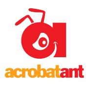AcrobatAnt