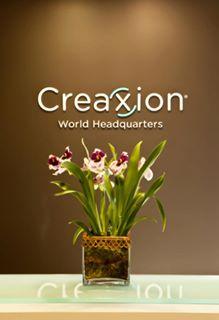Creaxion