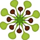 Verde Brand Communications