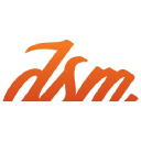The DSM Group